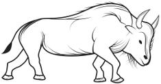Bison Enterprise